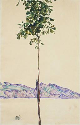 Self Portrait Drawing - Little Tree by Egon Schiele