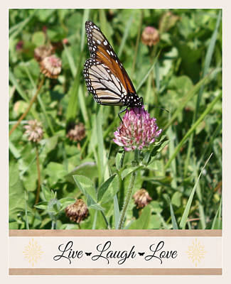 Inspirational Photograph - Live Laugh Love Butterfly by Inspired Arts