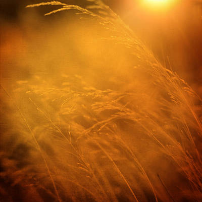 Impressionist Photograph - Living Out Of Touch by Taylan Soyturk
