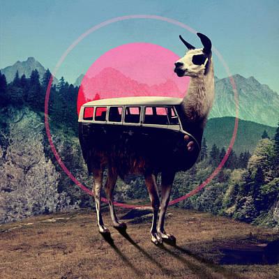 Llama Digital Art - Llama by Ali Gulec