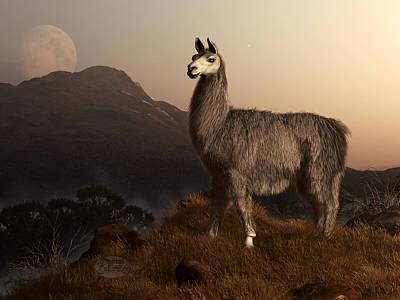 Llama Digital Art - Llama Dawn by Daniel Eskridge