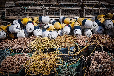 Lobster Traps Photograph - Lobster Fishing by Elena Elisseeva