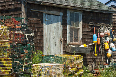 Lobster Traps Photograph - Lobster Shack by Juli Scalzi