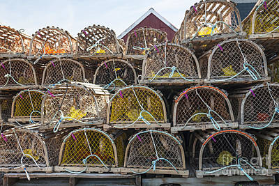 Lobster Traps Photograph - Lobster Traps by Elena Elisseeva