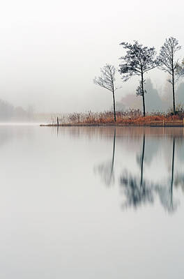 Loch Ard Reflections Print by Grant Glendinning