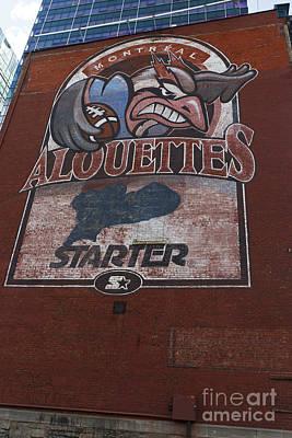 Que Photograph - Logo For The Montreal Alouettes by Jason O Watson