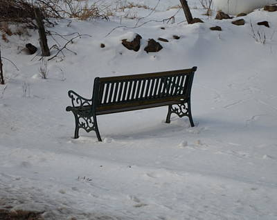Photograph - Lone Bench by Jenna Mengersen