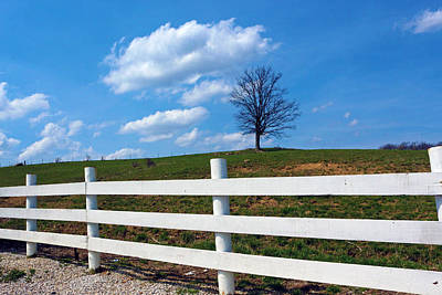Indiana Scenes Digital Art - Lone Tree by Lorna Rogers Photography