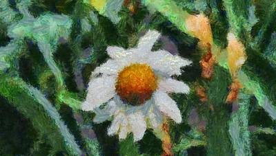 Daisies Mixed Media - Lonely Daisy by Dan Sproul