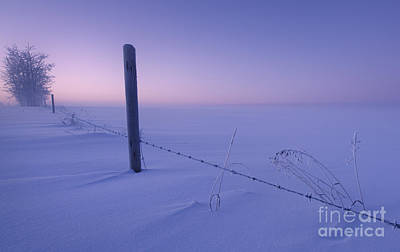 Barbed Wire Fences Photograph - Lonesome Winter by Dan Jurak