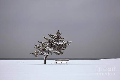 Lonesome Winter Print by Karol Livote