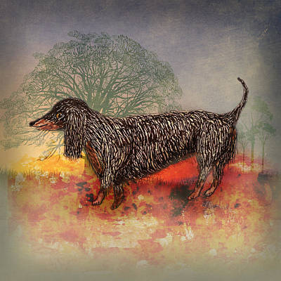 Dachshund Art Mixed Media - Long Haired Dachshund Dog by Terry Fleckney