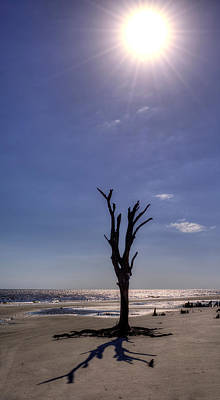 Long Shadow On Jekyll Island Print by Greg and Chrystal Mimbs