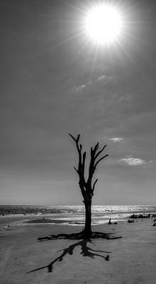 Long Shadow On Jekyll Island In Black And White Print by Chrystal Mimbs