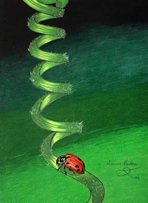 Ladybug Drawing - Long Winding Road by Dennis Nadeau