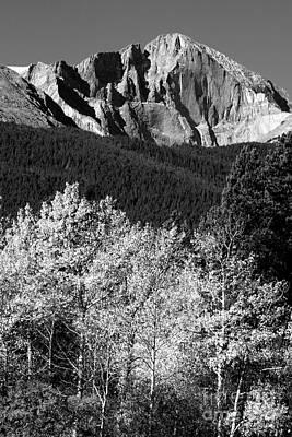 Longs Peak 14256 Ft Print by James BO  Insogna