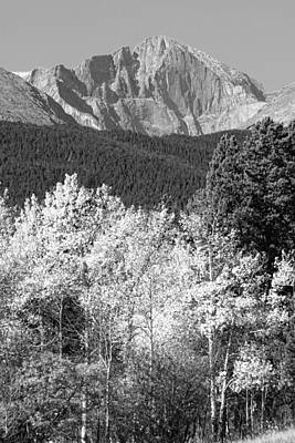 Tree Art Photograph - Longs Peak Autumn Scenic Bw View by James BO  Insogna