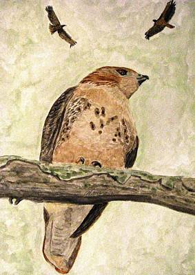 Red Tail Hawk Painting - Look Up by Angela Davies