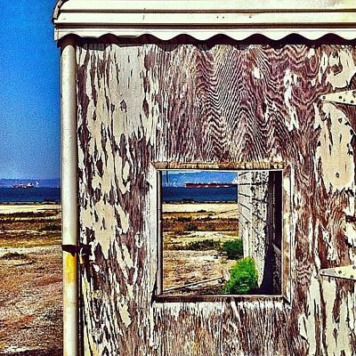 Landscapes Photograph - Lookig Through by Julie Gebhardt