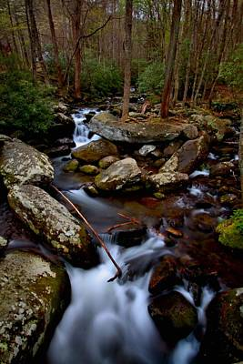 Great Smoky Mountain National Park Photograph - Looking Down by Carol R Montoya