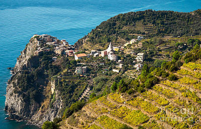 Looking Down Onto Corniglia Print by Prints of Italy