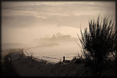 Liz Alderdice Photograph - Looking South by Liz  Alderdice