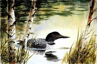 Loon And Birch Print by Robert Stump