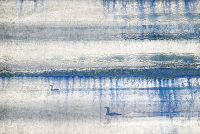 Loon Digital Art - Loons by Adrian Hillman