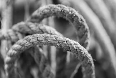 Daysray Photograph - Loops by Fran Riley