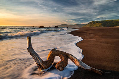 Best Ocean Photograph - Lost Coast Driftwood by Leland D Howard