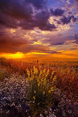 Bluesky Photograph - Lost In A Dream by Phil Koch