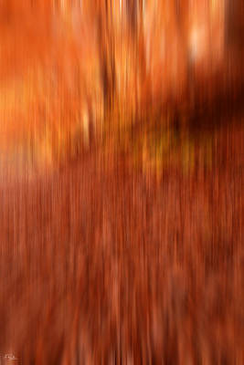 Red Abstract Photograph - Lost In Autumn by Lourry Legarde