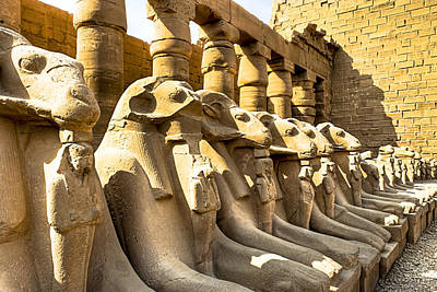 Ancient Photograph - Lost Sphinxes Of Thebes - Karnak Temple by Mark E Tisdale