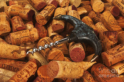 Lots Of Corks And A Cork Screw Print by Stefano Senise