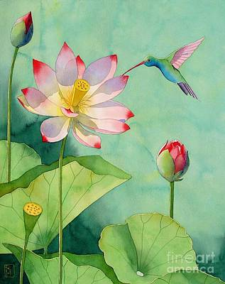 Lotus And Hummingbird Print by Robert Hooper