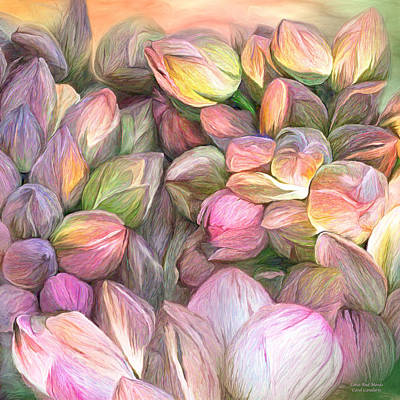 Mood Art Mixed Media - Lotus Bud Moods by Carol Cavalaris