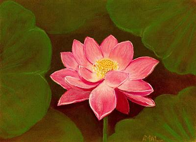 Plants Painting - Lotus Flower by Anastasiya Malakhova