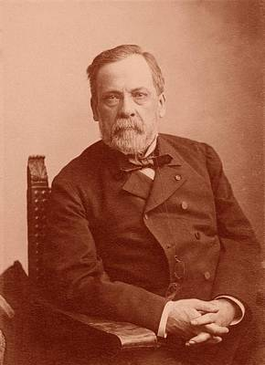 Fermentation Photograph - Louis Pasteur by American Philosophical Society
