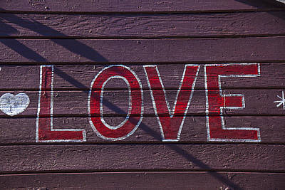 February 14th Photograph - Love by Garry Gay