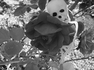 Photograph - Love In Death by Arielle Cunnea