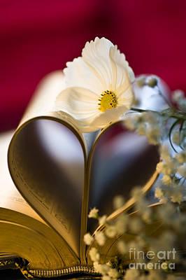 Love Is All Around Print by Jan Bickerton