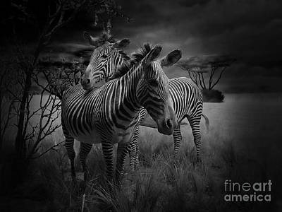 Love Season IIi - African Dream I Print by Xueling Zou