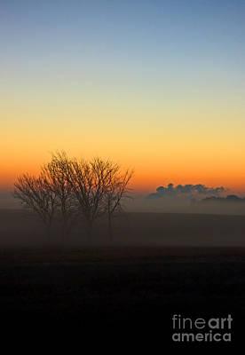 Lovely Montgomery Fog Print by Jamie Rabold