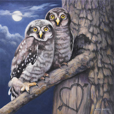 Owl Painting - Loving You by John Zaccheo