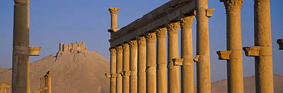 Palmyra Photograph - Low Angle View Of Great Colonnade by Panoramic Images