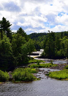 Michigan Waterfalls Photograph - Lower Tahquamenon Falls Ll by Michelle Calkins
