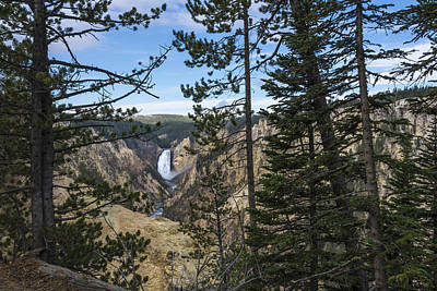 Lower Yellowstone Canyon Falls - Yellowstone National Park Wyoming Print by Brian Harig