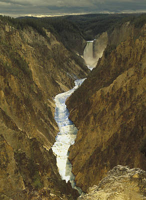 Grand View Of Nature Photograph - Lower Yellowstone Falls And Grand by Tim Fitzharris