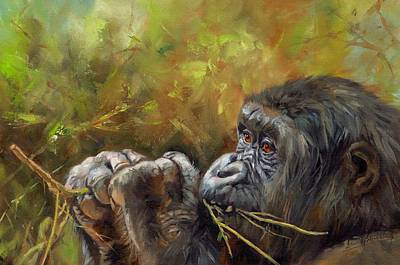 Gorilla Painting - Lowland Gorilla 2 by David Stribbling
