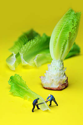 Lettuce Digital Art - lumber workers cutting Lettuce little people on food by Paul Ge